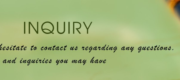 inquiry-min